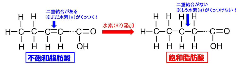 脂肪酸模式図