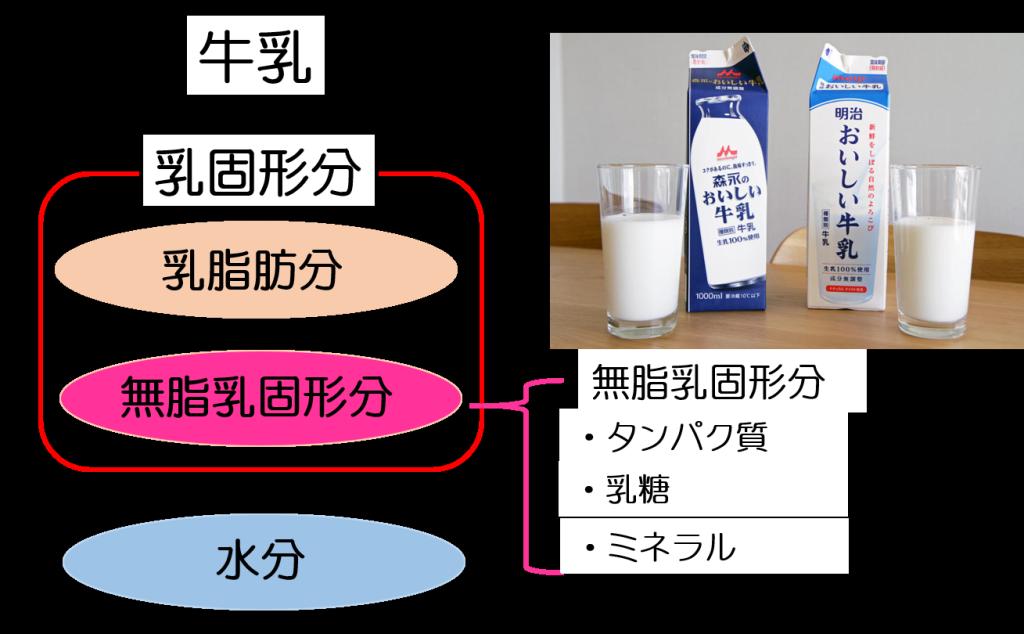 牛乳まとめ2