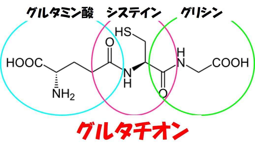 グルタチオン構造式