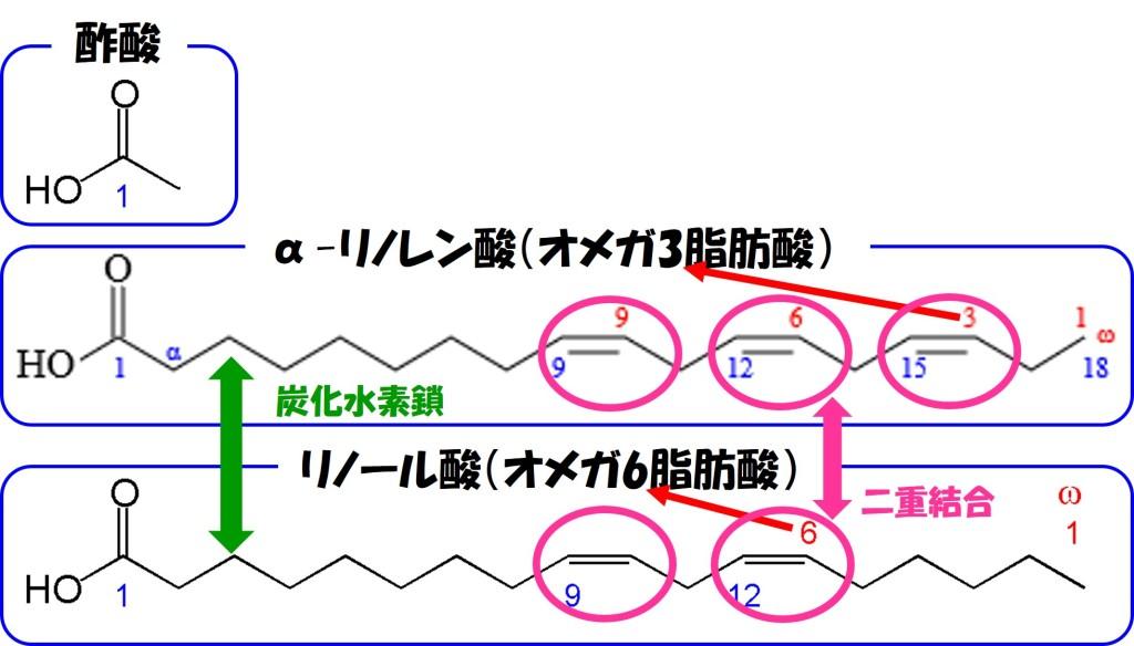 リノール酸、αリノレン酸